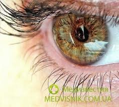 Вернуть утраченное зрение станет возможным