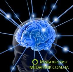 найден участок мозга, отвечающий за переедание